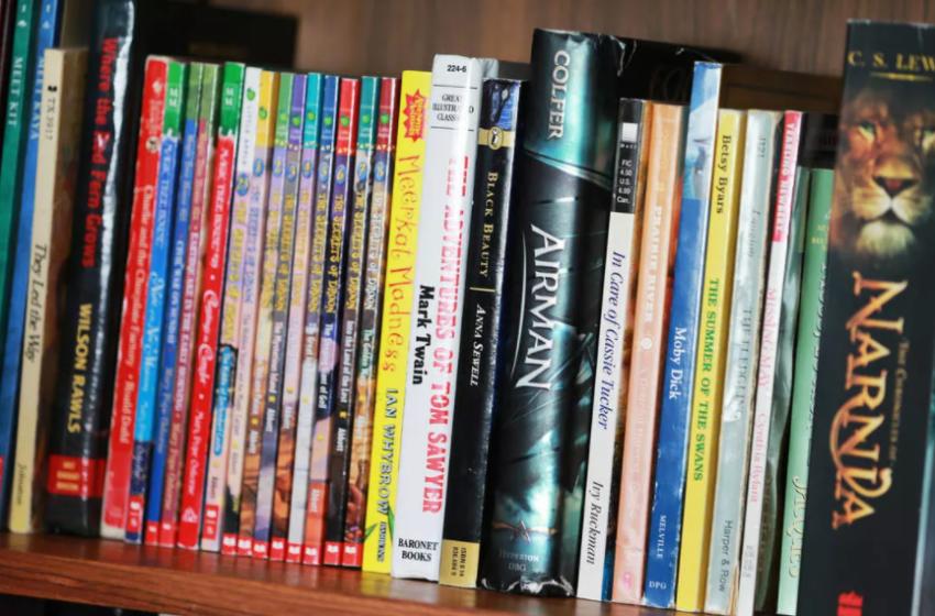 Historia e 12 vjeçarit që lexonte copa letrash se nuk kishte para të blinte libra