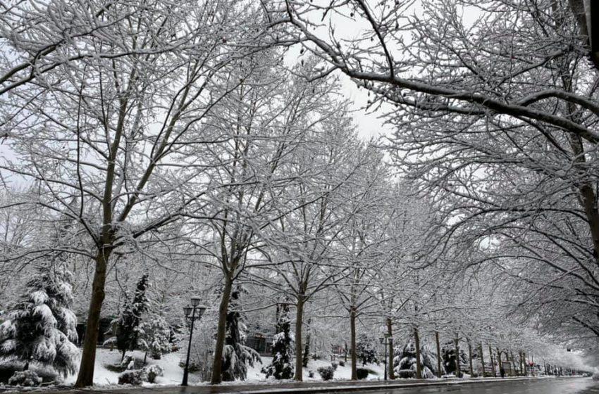 Shqipëria 'mbulohet' në dëborë