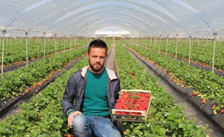 Nga punëtor krahu në sipërmarrës në Itali, mesazhi i 29 vjeçarit për të rinjtë shqiptarë