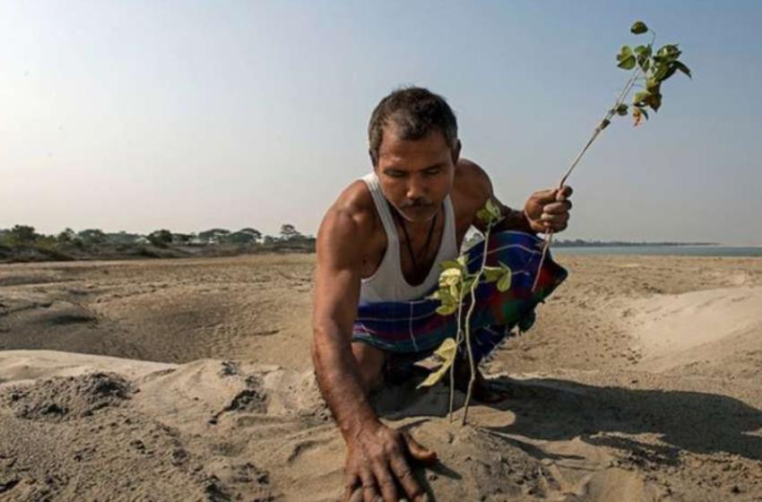 I vetëm punoi për mëse 35 vite… historia e njeriut që krijoi një pyll të tërë me duart e tij
