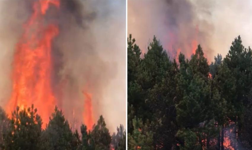 Zjarret në Kukës rrezikojnë disa fshatra, Kosova sjell forca për t'i ardhur në ndihmë zjarrfikësve