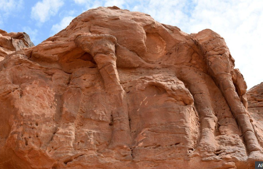 Pamje, këto janë skulpturat më të vjetra në botë! Relievet datojnë afro 8,000 vite më parë
